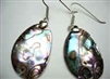 43170-2 Abalone Shell Earring w/925 Silver Hook