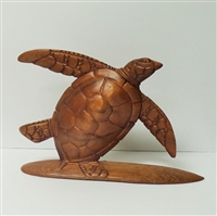 Wood Turtle Display