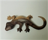 Medium Gecko Wood Display