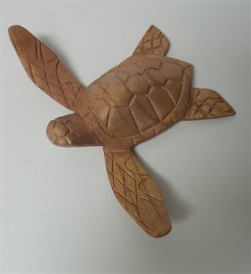 Medium Turtle Wood Display