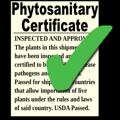 Phytosanitary Certificate for International Shipments