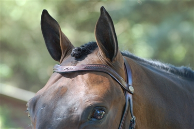 Dy'on V Lace Browband