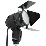 QZ313D Quartz Video Light w/ Diffusion Filter