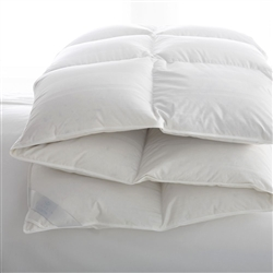 Lucerne Goose Down Comforter by Scandia Home