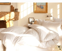 Hungarian Down Comforter - Diagon Spa Winter Light by Down to Basics