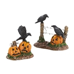 DEPARTMENT 56 HALLOWEEN VILLAGE HALLOWEEN RAVENS