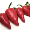 Red Fresno Chiles
