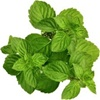 Lote Green Arrow flavor E liquid