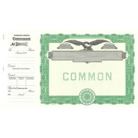 Goes 512 Blank Common Shares Stock Certificate