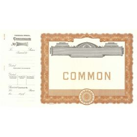 Goes 500 Common Stock Certificate