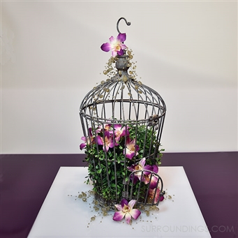 Chickadee Decorative Bird Cage