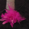 Feather pics