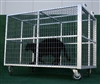 Heavy Duty Steel Exotic Animal Transport Cage