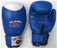 The Gloves Comp 2 Sparring Gloves Blue