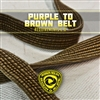 Robson Moura Requirements 2.0 - Brown Belt - NEW