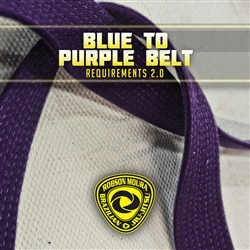 Robson Moura Requirements 2.0 - Purple Belt
