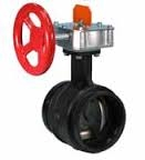 Victaulic Butterfly Valve (closed)
