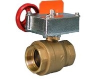 Victaulic FireLock Ball Valve