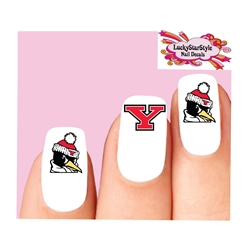 Youngstown State Penguins Assorted Waterslide Nail Decals