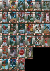 Carolina Mudcats Minor League 1999 Team Set