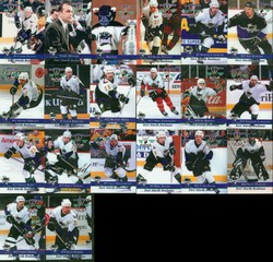 Forth Worth Brahmas Team Set
