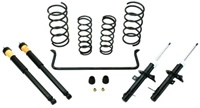 FORD RACING 2000-2005 FOCUS SUSPENSION KIT -- M-3000-ZX3