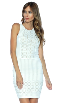 Nightcap Ecru Spiral Lace Sport Mini Dress