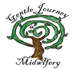 Gentle Journey Midwifery Custom Birth Kit
