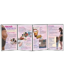 Hazards During Pregnancy Folding Display