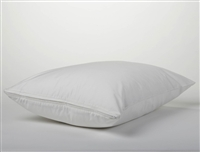 Coyuchi Pillow Protector