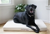 "Savvy Rest Organic Cotton Savvy Doggyâ""¢  Pet Bed"