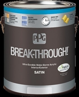 BREAKTHROUGH 250 SATIN BLACK Gallon