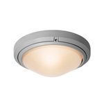 Access Lighting - Oceanus Wet Location Ceiling or Wall Fixture