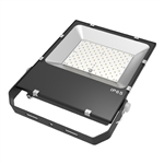 Diva Lite LED Commercial Flood Light AEC-FL12050K