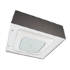 LSI LED Canopy Light