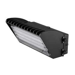 Diva Lite 70 Watts LED Wall Pack Fixture