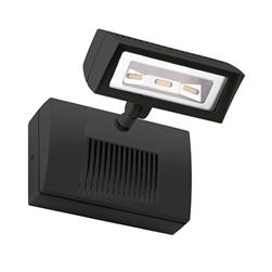 RAB LED Flood Light
