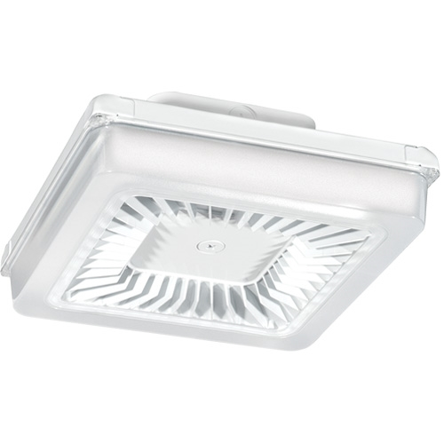 RAB LED PORTO Garage Light PRT30W