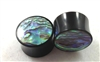 Pair of Black Horn and Paua Shell Organic Solid Plugs