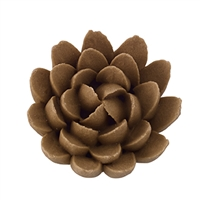 Chrysanthemum - Med-Lg - Brown
