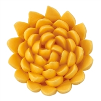 Chrysanthemum Assortment - Large