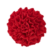 Carnation - Red