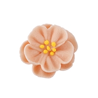 Dainty Bess - Medium - Peach