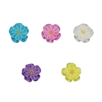Dainty Bess Assortment - Med-Lg
