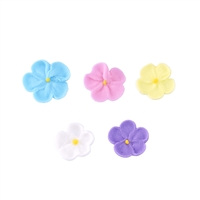 Mini Forget Me Nots - Assorted Colors