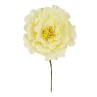 Large Gum Paste Peony Blossom - All Yellow