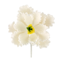 XXL Gum Paste Peony Blossom - White With Yellow And Green Center