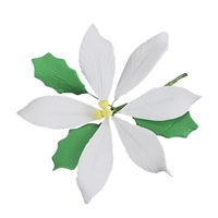 Large Gum Paste Poinsettia - White
