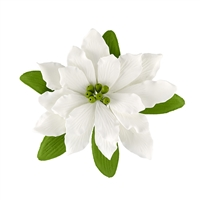 Large Gum Paste Deluxe Poinsettia - White