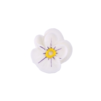 Small Royal Icing Pansy  - White